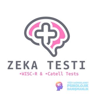 Zeka Testleri
